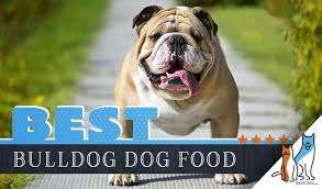 15 Best Dog Foods For Bulldogs Our 2019 In Depth Feeding Guide