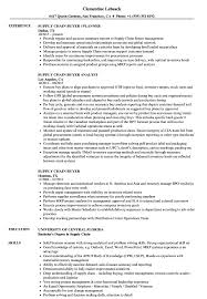 Buyer Resume Magdalene Project Org