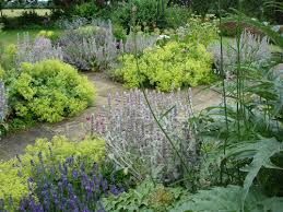 Cottage Garden Design Ideas  DutapetanimudaorgCottage Garden Plans