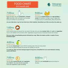 Need Diet Plan Nd Food Chart For 8 Month Old Baby