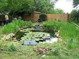 pensacola seed and garden seed garden landscaping pensacola seed garden