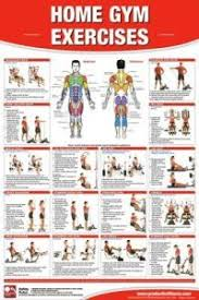 Gold Gym Exercise Chart Pdf Gold S Gym Home Exercise