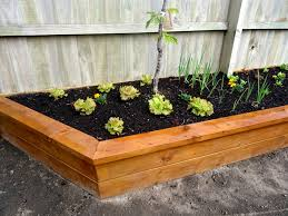 a raised garden bed can be used to give your garden height and depth or just make it easier to do your vegetable garden