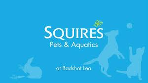 aquatics centre at squire s badshot lea