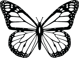 printable butterfly coloring pages.  Coloring Coloring Page Butterfly Caterpillar To Monarch Life  Cycle Detailed Pages Printable Pdf With Printable Butterfly Coloring Pages O