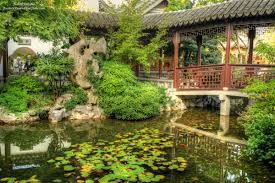 trees pond and bridge in lan su chinese garden in portland oregon