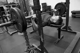 30 Pictures Of Bench Press And Squat Rack  Chair  Sofas And Squat And Bench Press