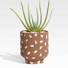 glazed planters crate and barrel