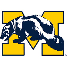 Michigan Wolverines Primary Logo | Sports Logo History