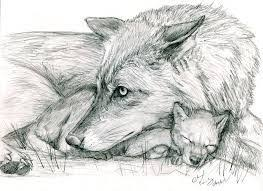 white wolf pup drawing. Fine Wolf Image Result For Wolf Pup Drawing On White Wolf Pup Drawing