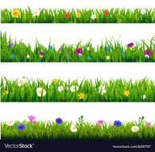 grass and flowers border. Delighful Flowers Grass And Flowers Border Set Vector Image In And Flowers Border H