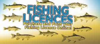 Image result for licence to fish pics