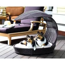 luxury dog bed furniture. The Best Luxury Dog Beds Australia Outside Large Noten Pict For Popular And Trends Bed Furniture