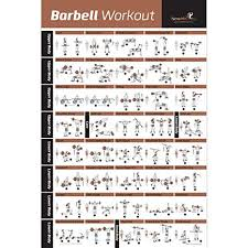 barbell workout exercise poster laminated home gym weight lifting chart build muscle tone