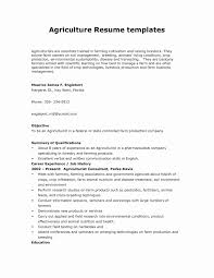 Human Voiced Resume Example Human Voiced Resume Example Best Of Examples Human Resources 76