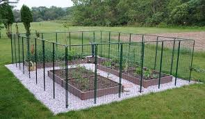 deer proof garden. Best Deer Resistant Garden Ideas Proof