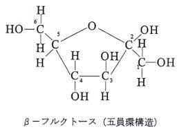 フルクトース 構造 式