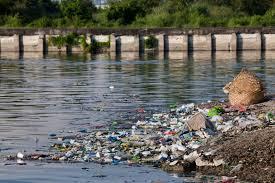 improper waste disposal consequences enlighten me improper waste disposal consequences