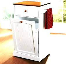 tilt out trash bin storage cabinet diy can double wood plans wooden kitchen tr