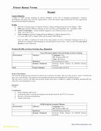 Best Of Resume Format For Cts Company Resume Ideas