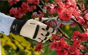 Small Picture Best Gardening Gloves pyihomecom