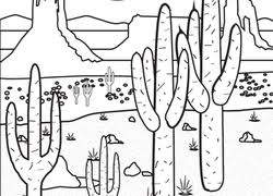 Small Picture Desert Coloring Pages Printables Educationcom