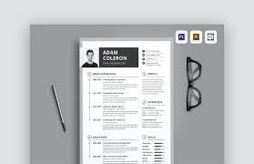 Resume Web Template Resume Timeline Design Editable Resume Template