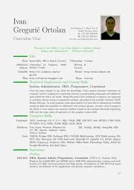 Cv Example Uk Age 16 Resume Template Cover Letter