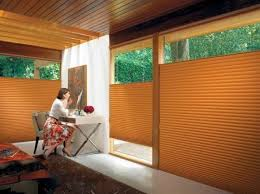 Variety Blinds And Shutters  Austin TX United States Roman Window Blinds Up Or Down