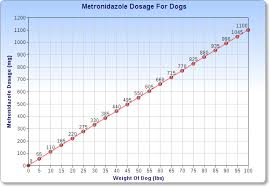 Dog Medication Dosage Chart Metronidazole For Dogs Veterinary Place