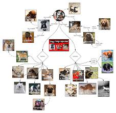 Template Doggo Diagram 1 Lucidchart