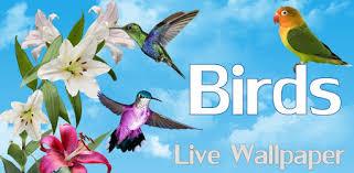 <b>Birds</b> Live Wallpaper Free - Apps on Google Play