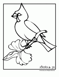 Small Picture Christmas Coloring Pages Winter Birds Animal Jr
