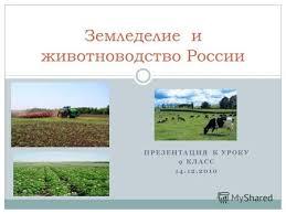 Презентация на тему logo Сельское хозяйство Украины Сельское  ПРЕЗЕНТАЦИЯ К УРОКУ 9 КЛАСС 14 12 2010 Земледелие и животноводство России