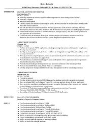Ab Initio Developer Resume Samples Velvet Jobs