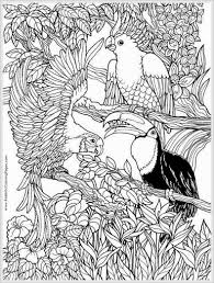 Small Picture coloring pages for adults to print and color free Parrots Bird