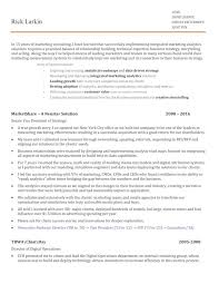 Digital Strategist Resume The Most Memorable Martech Resume Ive Seen Chief
