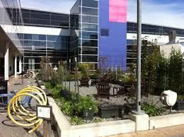 main office. Lovely Google Main Office 3296 File Mountain View Campus Garden Wikimedia Mons Ideas F