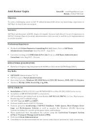 Sap Consultant Sample Resume Classy Sap Security Sample Resumes Resume Amazing For Freshers About Basis