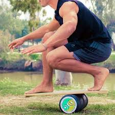 Indo Board Exercise Chart 11 Best Balance Boards Of 2019 Wobble Board Balance