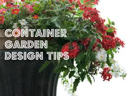 Small Picture Beautiful Container Garden Designs Home Garden Joy