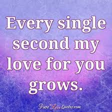 My Love For You Quotes Simple Every Single Second My Love For You Grows PureLoveQuotes