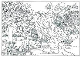 Coloring Pages For Adults Easy Printable Princess Beautiful Nature