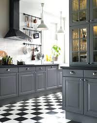 best 25 ikea white kitchen cabinets ideas on white 15 stunning gray kitchens light gray