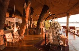 The Canopy Treehouses  Cairns Luxury Wildlife Accommodation And Treehouse Accommodation
