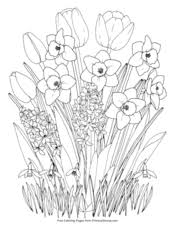 Spring coloring sheets can actually help your kid learn more about the spring season. Spring Coloring Pages Free Printable Pdf From Primarygames