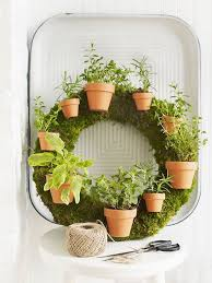 indoor gardening ideas. Garment Rack Hanging Garden Indoor Gardening Ideas E