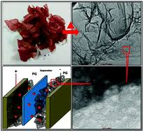 Unique perforated graphene derived from Bougainvillea flowers for ...