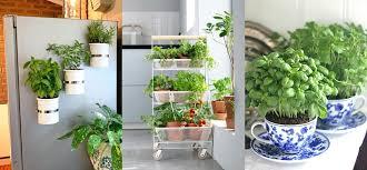 17 herb garden ideas to add flavor to