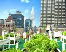 8 gorgeous urban rooftop gardens across nyc